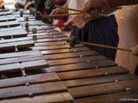 De kracht van de marimba