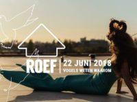 Ga het dak op met ROEF!