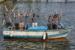 Lampedusa aan de Amstel