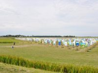Land – Art Project in Sloten