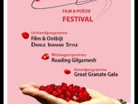 Granate Festival: maakt het onzichtbare zichtbaar