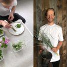 Steven Broere: meesterlijk koken uit de natuur