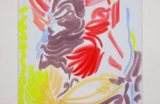 Springvossen 19 augustus | Evi Vingerling