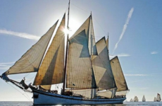 Indrukwekkende zeiljachten bekijken, meevaren en naar verhalen luisteren op het Sail Pampusfestival